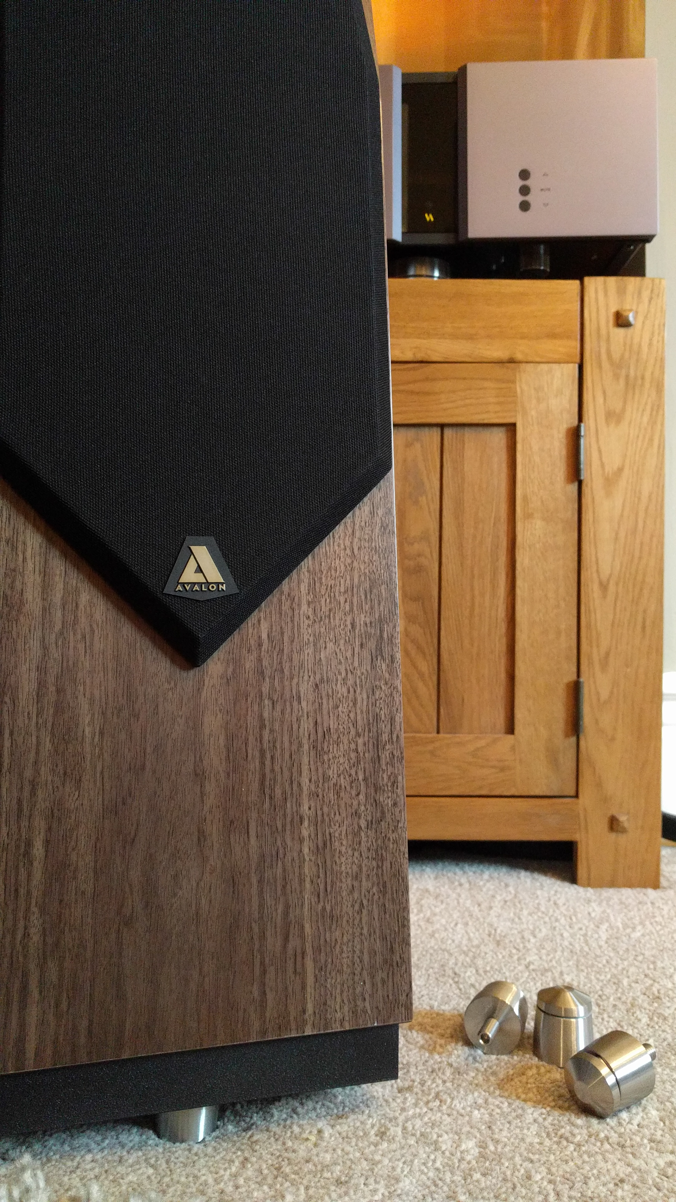 Avalon Idea & Vitus RI-100 @ Audio Therapy